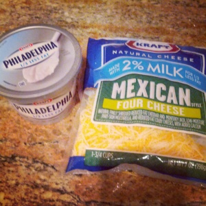 Four cheese mexican blend and cream cheese - both low in fat!
